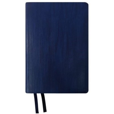 NASB 2020 Giant Print Text Bible, Blue, Indexed (Imitation Leather)