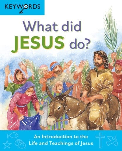 What Did Jesus Do? (Hard Cover)