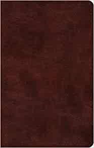 ESV Large Print Thinline Bible, TruTone, Mahogany (Imitation Leather)