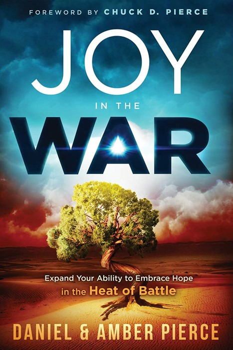 Joy in the War (Paperback)