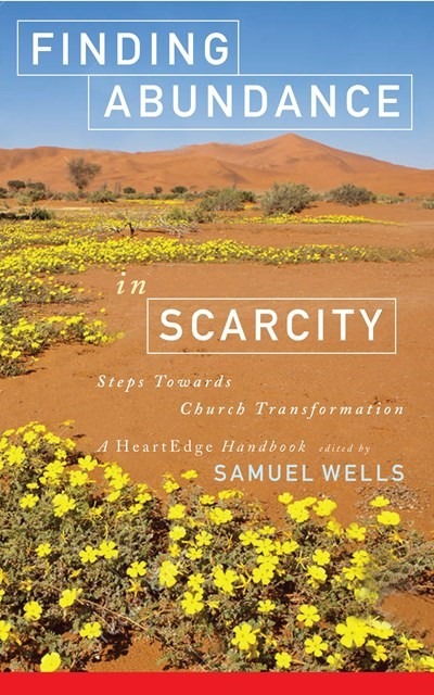 Finding Abundance in Scarcity (Paperback)