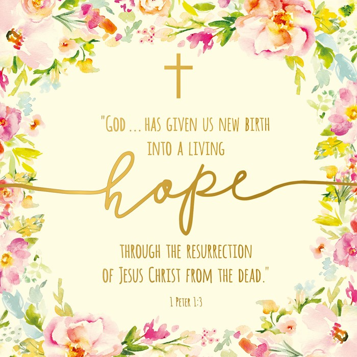 Compassion Charity Easter Cards: Living Hope (Pack of 8) (Cards)