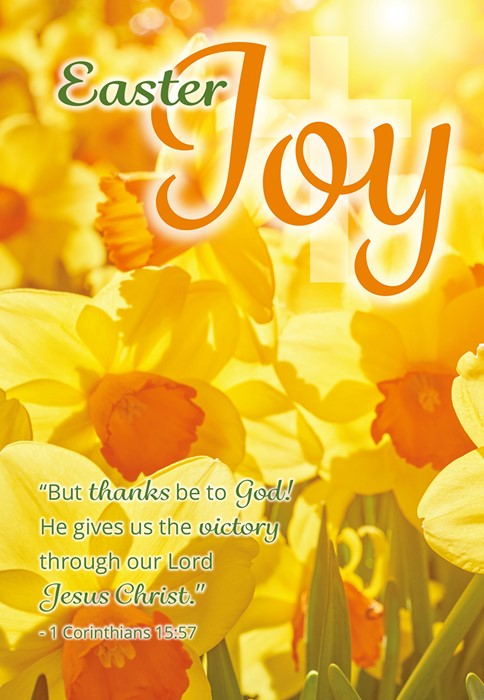 Compassion Charity Easter Cards: Joy/Daffodils (Paack of 8) (Cards)