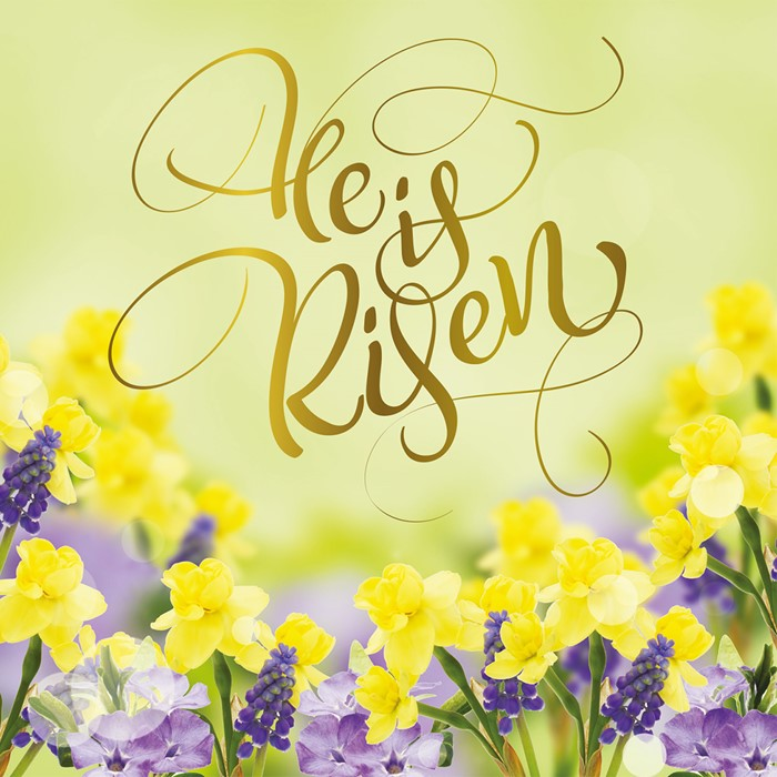 Compassion Charity Easter Cards: Risen (Pack of 8) (Cards)