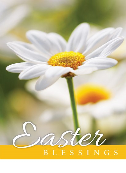 Easter Mini Cards: Easter Blessings (Flower) (Pack of 4) (Cards)
