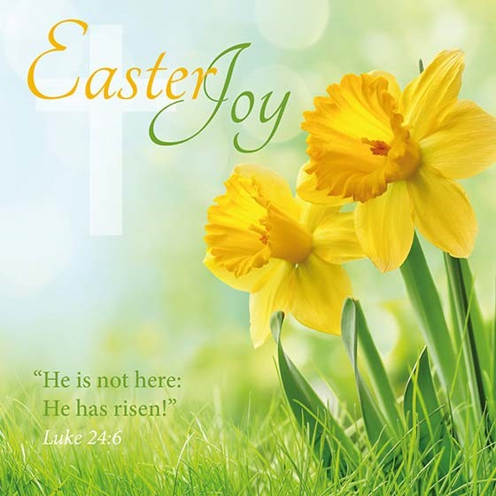 Easter Cards: Easter Joy (Pack of 5) (Cards)