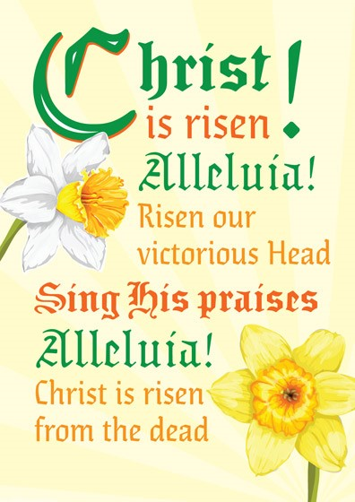 Easter Cards: Christ Is Risen (Flowers) (Pack of 5) (Cards)
