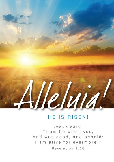 Easter Cards: Alleluia He Is Risen (Pack of 5) (Cards)