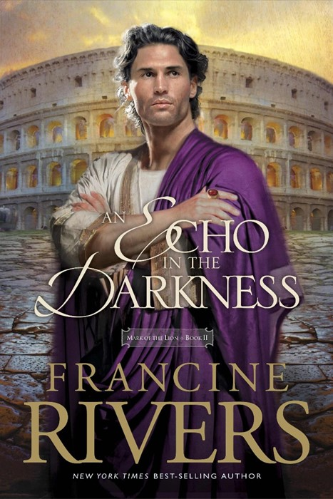 Echo In The Darkness, An (Paperback)