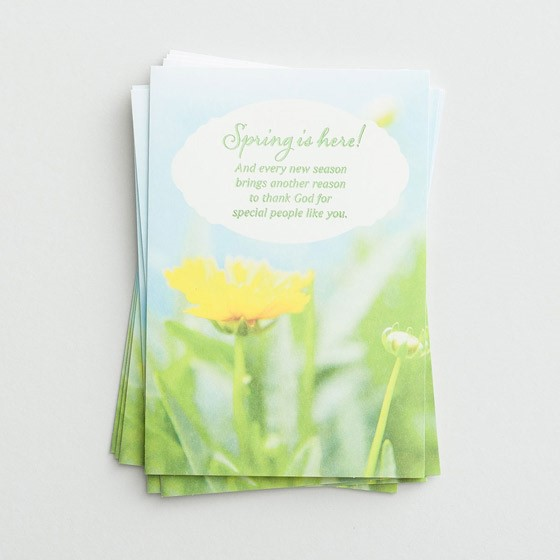 Easter Cards: Spring Is Here (Pack of 6) (Cards)