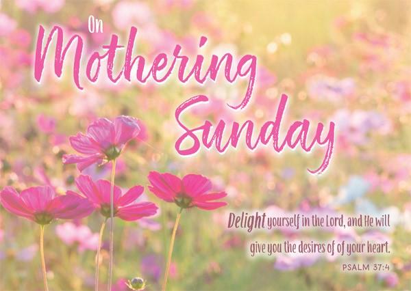 On Mothering Sunday - Postcard Pink (Pack of 24) (Postcard)