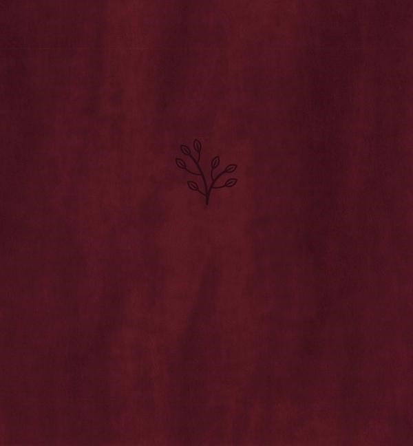 Amplified Holy Bible, XL Edition, Leathersoft, Burgundy (Leather Binding)