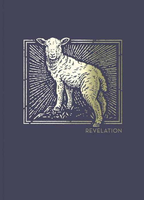 NET Abide Bible Journal: Revelation (Paperback)