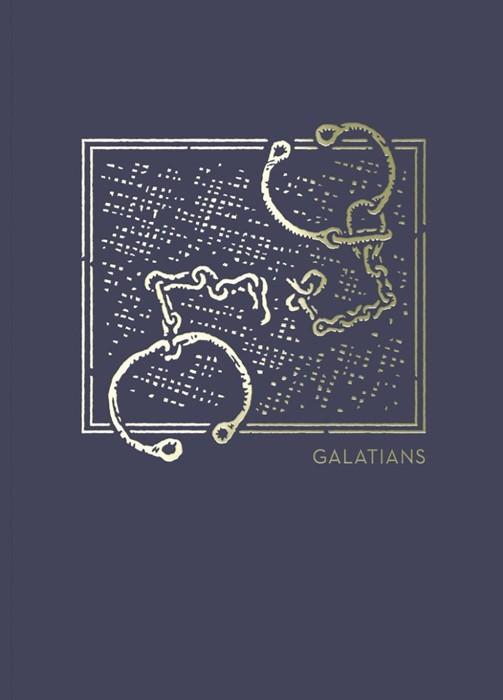 NET Abide Bible Journal: Galatians (Paperback)