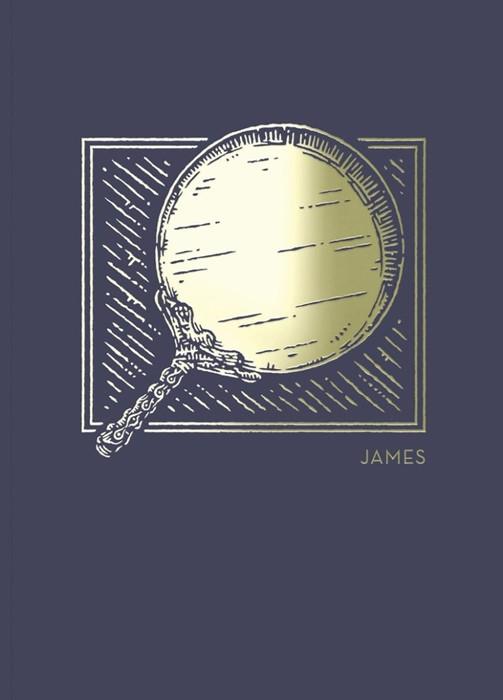 NET Abide Bible Journal: James (Paperback)