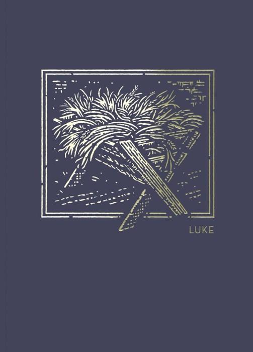 NET Abide Bible Journal: Luke (Paperback)