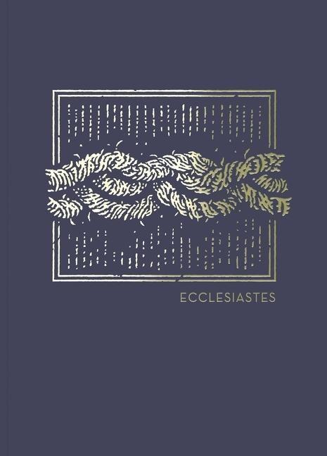 NET Abide Bible Journal: Ecclesiastes (Paperback)