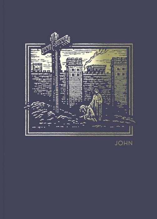 NET Abide Bible Journal: John (Paperback)
