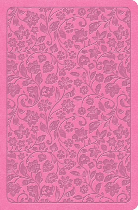 KJV Large Print Personal Size Reference Bible, Pink, Indexed (Imitation Leather)