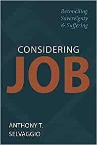 Considering Job (Paperback)