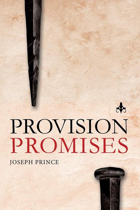 Provision Promises (Paperback)