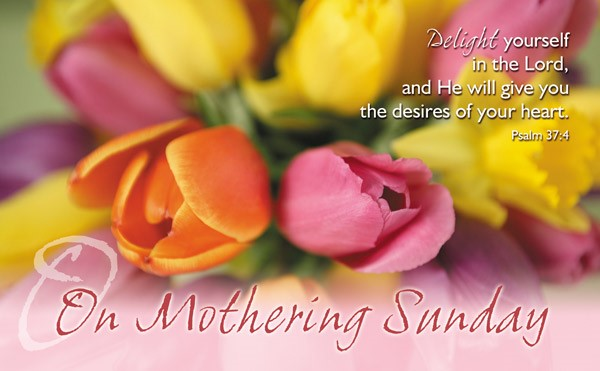 On Mothering Sunday - Postcard Tulips (Pack of 24) (Postcard)