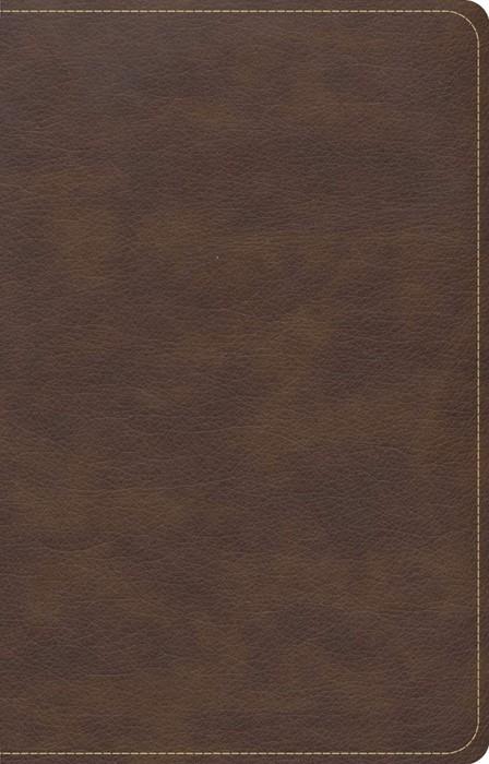CSB Single-Column Compact Bible, Brown (Imitation Leather)