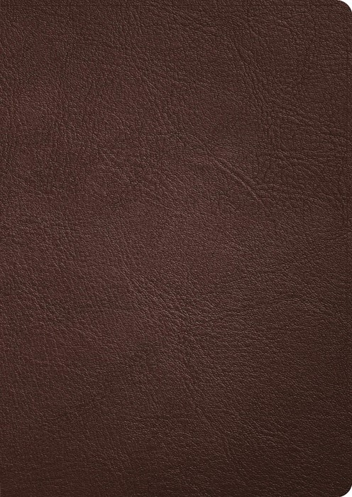 CSB Verse-by-Verse Reference Bible, Handcrafted Collection (Genuine Leather)