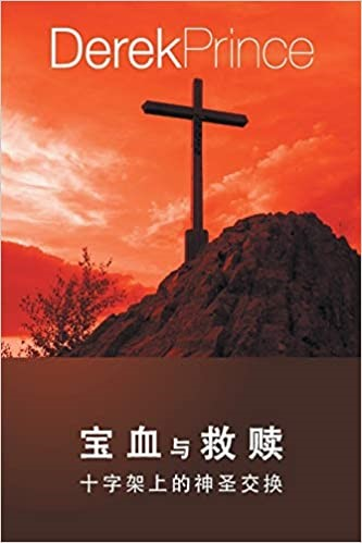 Bought with Blood (Chinese) (Paperback)
