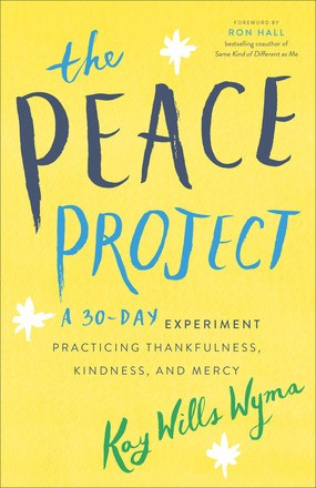 The Peace Project (Paperback)