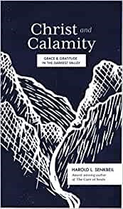 Christ and Calamity (Paperback)