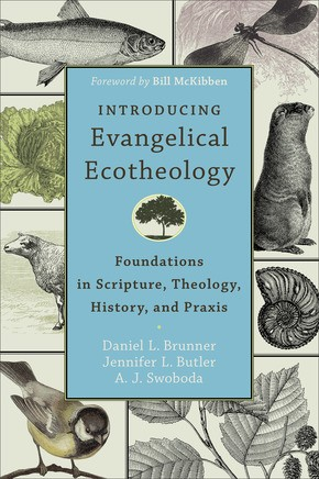 Introducing Evangelical Ecotheology (Paperback)