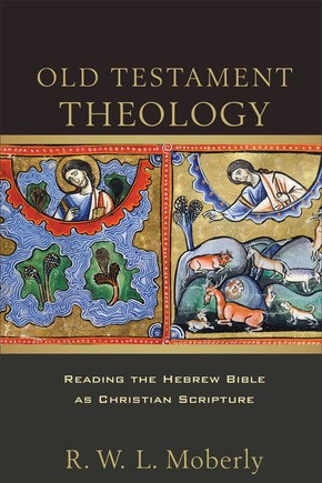 Old Testament Theolgy (Paperback)