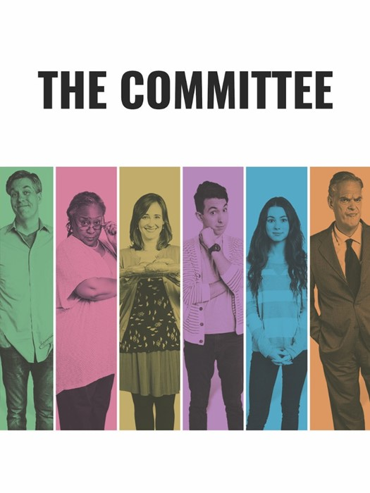 The Committee Series DVD (DVD)