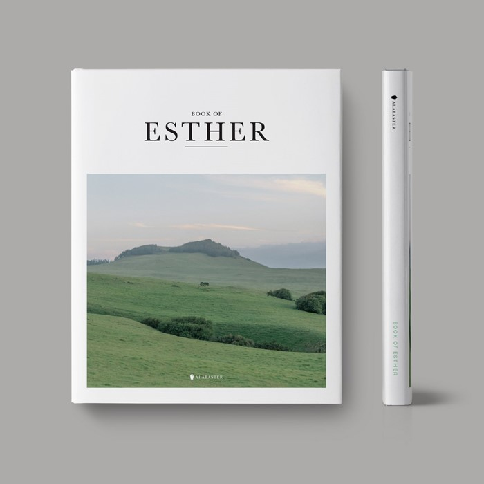 Book of Esther (Hardcover) (Hard Cover)