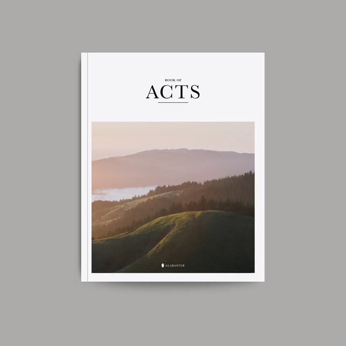 Book of Acts (Paperback)