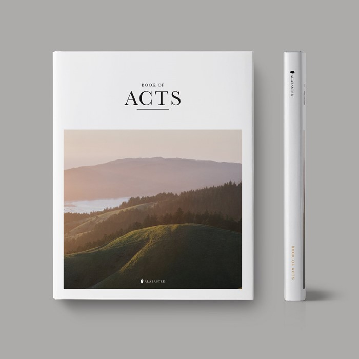 Book of Acts (Hardcover) (Hard Cover)