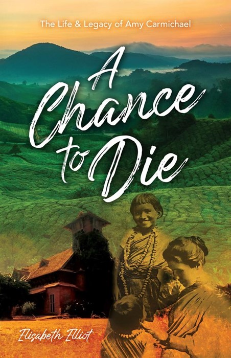 Chance to Die, A (Paperback)