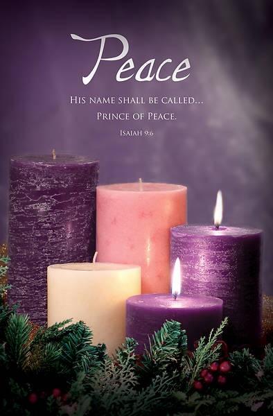 Peace Advent Bulletin (pack of 100) (Bulletin)