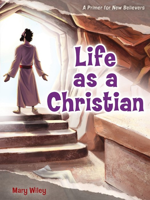 Life as a Christian (Paperback)