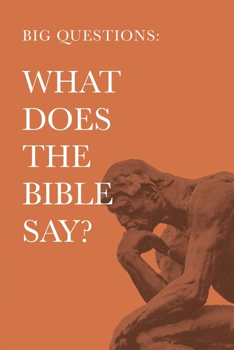 Big Questions: What Does the Bible Say? (Paperback)