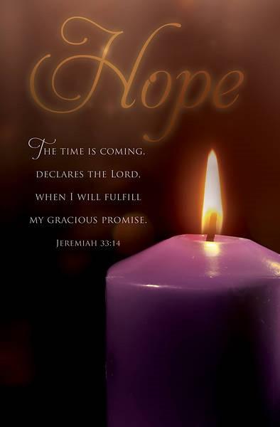 Hope Scripture Advent Bulletin (pack of 100) (Bulletin)