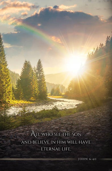 All Who See the Son Funeral Bulletin (pack of 100) (Bulletin)