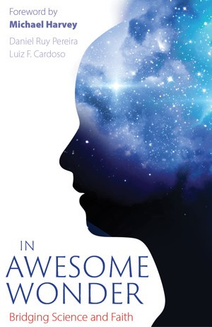 In Awesome Wonder (Paperback)