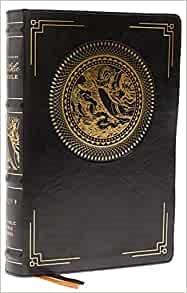NRSVCE Illustrated Catholic Bible (Imitation Leather)