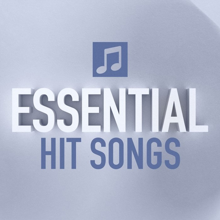 Essential Hit Songs CD (CD-Audio)