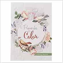 Proverbs in Color Journal (Paperback)