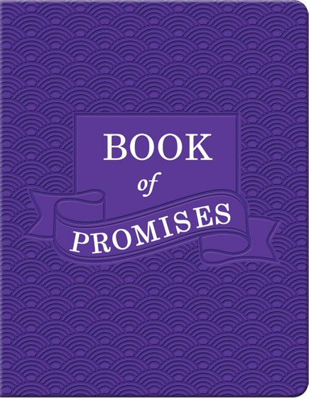Book of Promises (Imitation Leather)