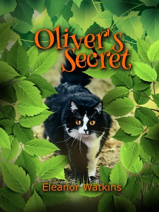 Oliver's Secret (Paperback)