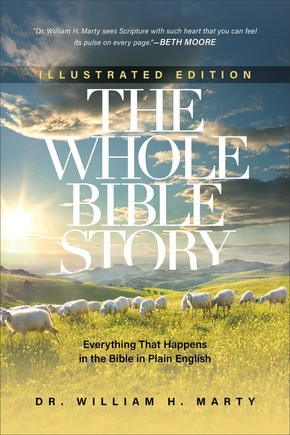 The Whole Bible Story Illustrated Edition (Paperback)